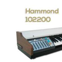 Hammond 102200